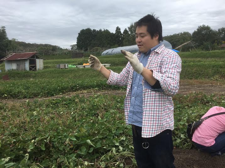 風のファーム(芋収穫)④